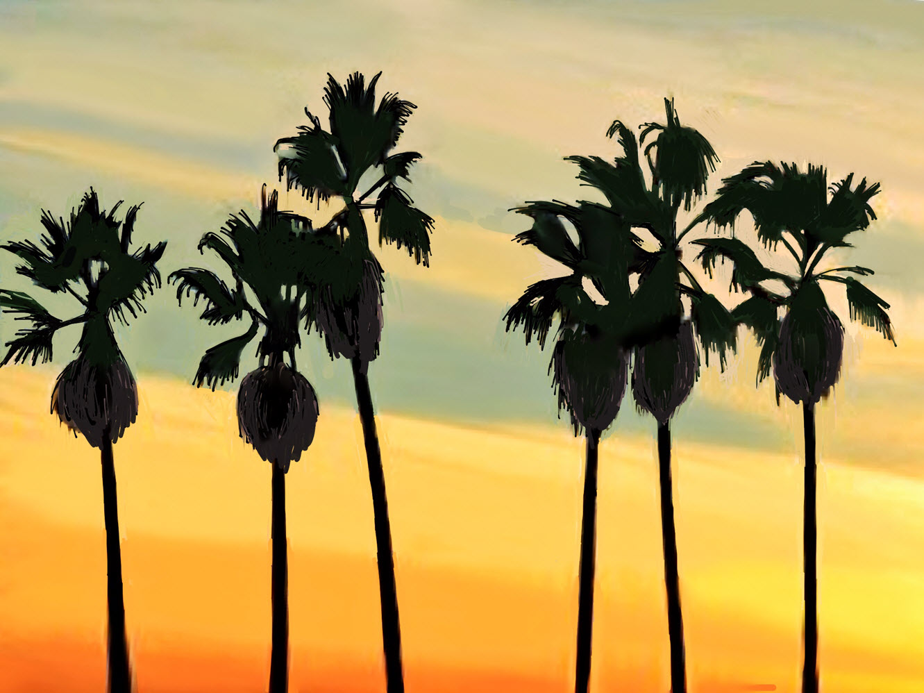 California Sunset with Palms