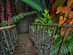 Tropical Stairs to Gardens
