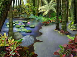 Tropical Lotus Pond